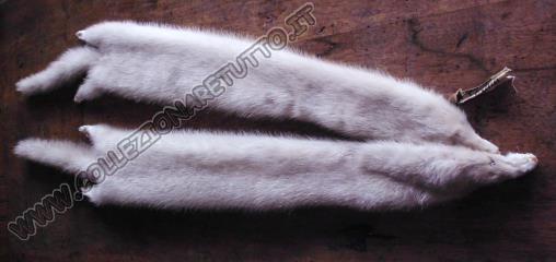 sciarpa di visone